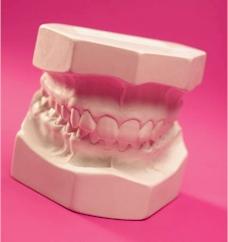 a fake set of dentures